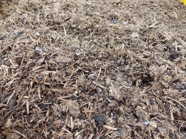Spent Mushroom Compost600 x 450 jpeg 120kB